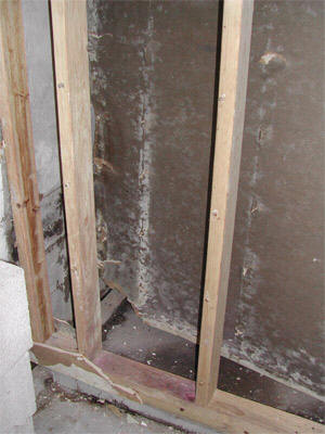 Water Damage And Your Health Done Right Restoration
