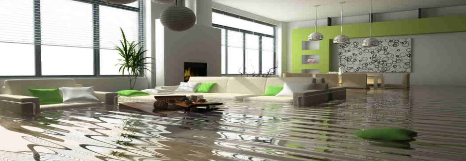 Water Damage?  Done Right Carpet & Restoration Inc.